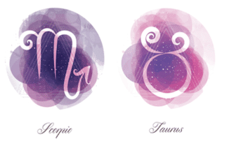 Scorpio man and Taurus woman zodiac sign